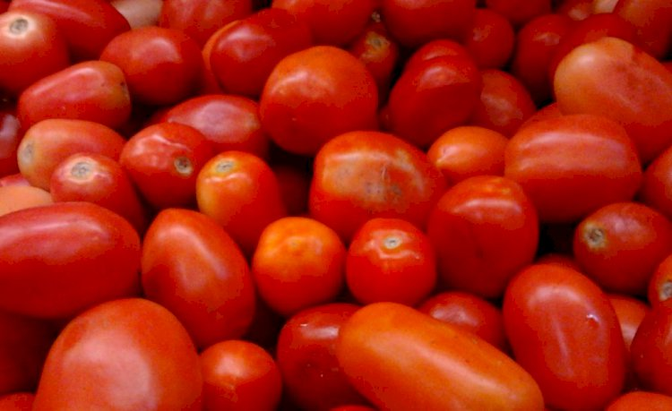 Tomato prices go up from Rs 10 to Rs 60 in Bengaluru