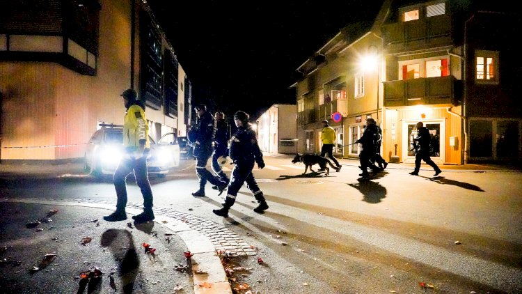 5 killed in bow and arrow attack in Norway
